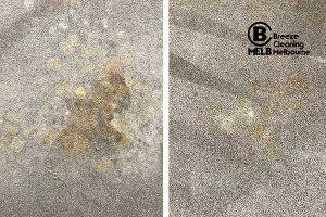 Carpet Stains Removal