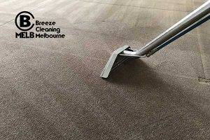 Professional Carpet Cleaning