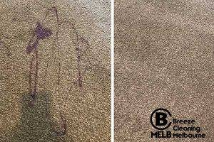 Carpet Stains Cleaning
